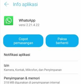 Layar Mati Saat Pesan Suara Whatsapp