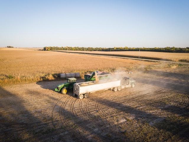 Peluang Usaha dan Prospek Kerja Jurusan Agroteknologi