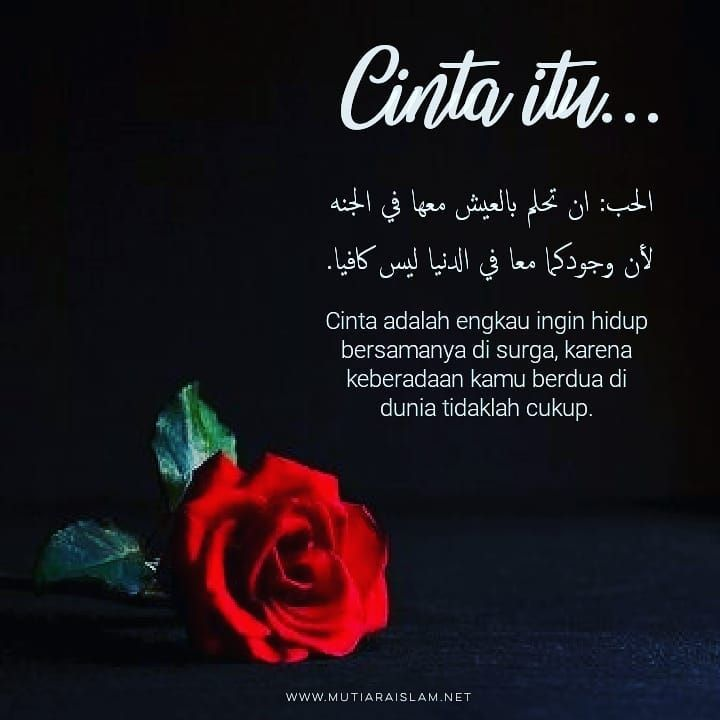 Motto Hidup Islam Tentang Cinta 3